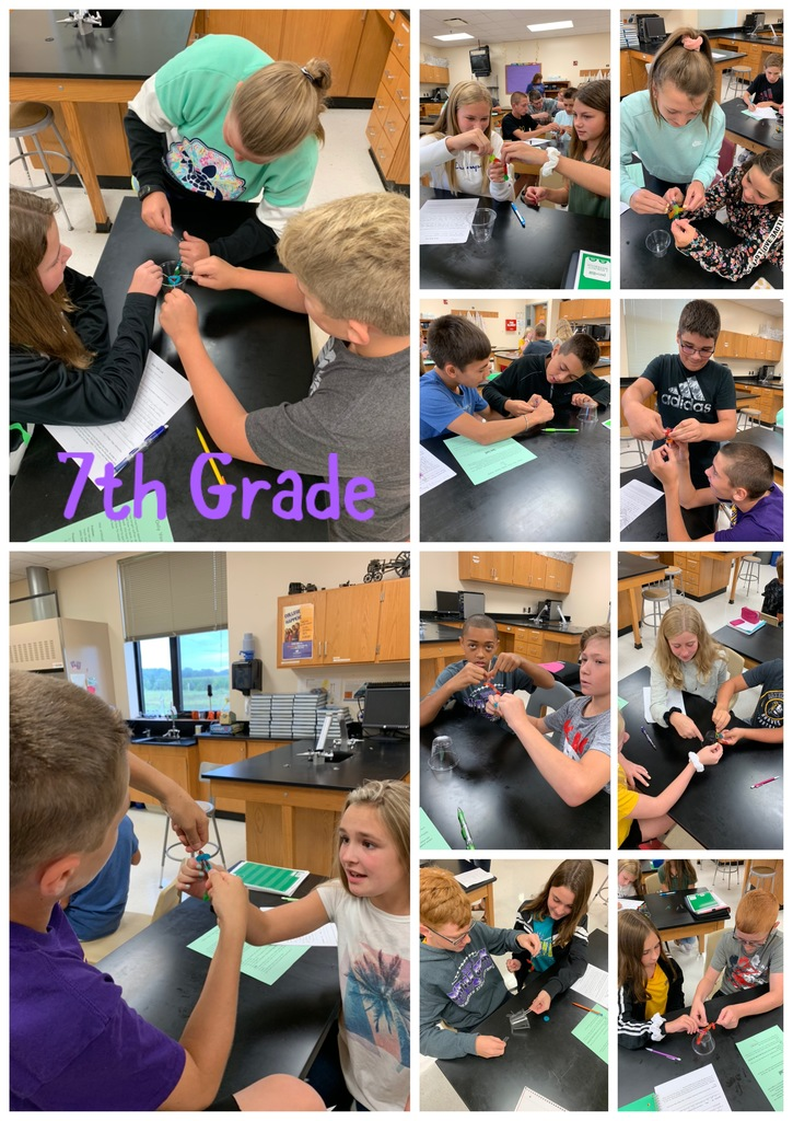 7th grade determine ways to save Sam and fill out their first lab report.