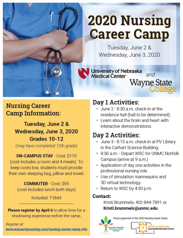 Nursing Summer Camp