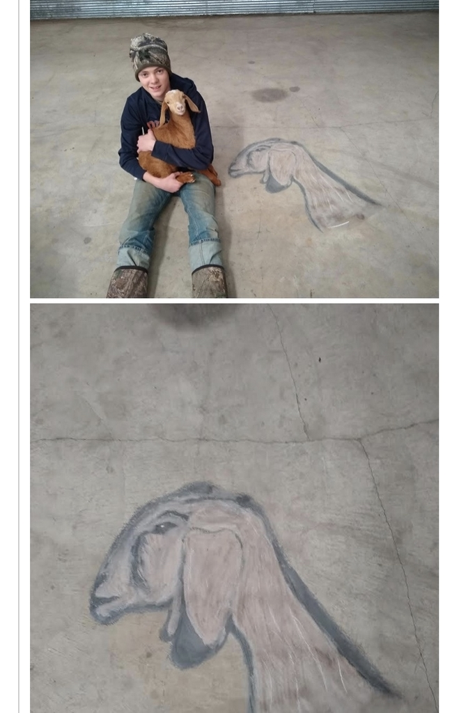 Dane 's Chalk Art